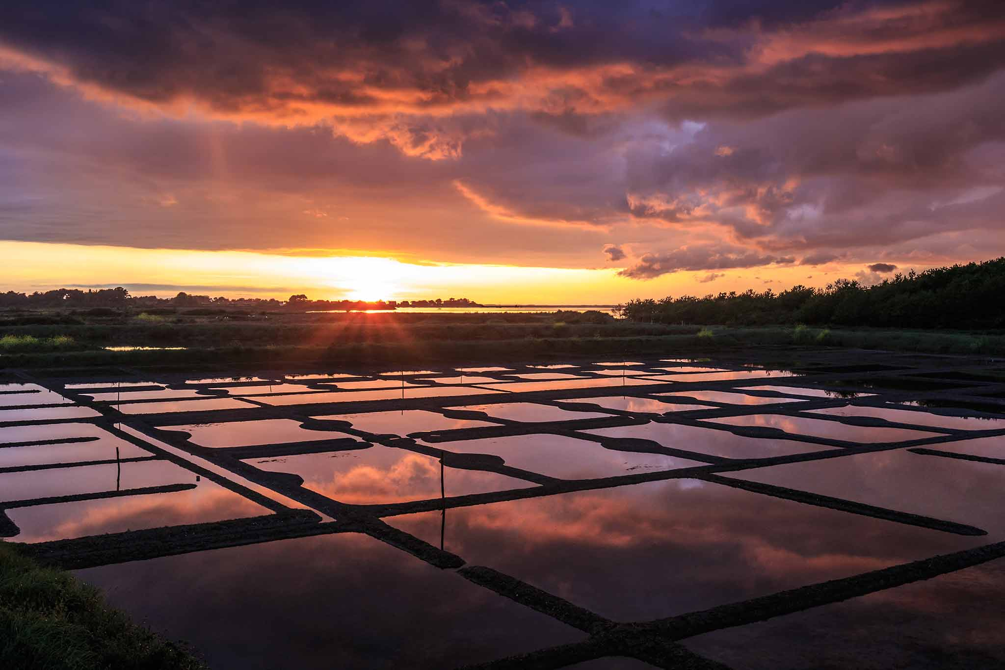 Sel et Fleur de sel IGP Indication géographique protégée